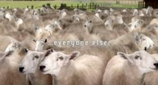 samsung-galaxy-s-iii-teaser-video-calls-you-sheep
