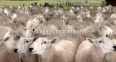 samsung-galaxy-s-iii-teaser-video-calls-you-sheep